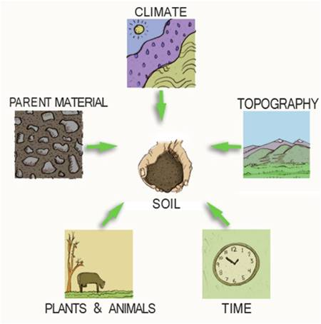 Soil pdst for Soil factors